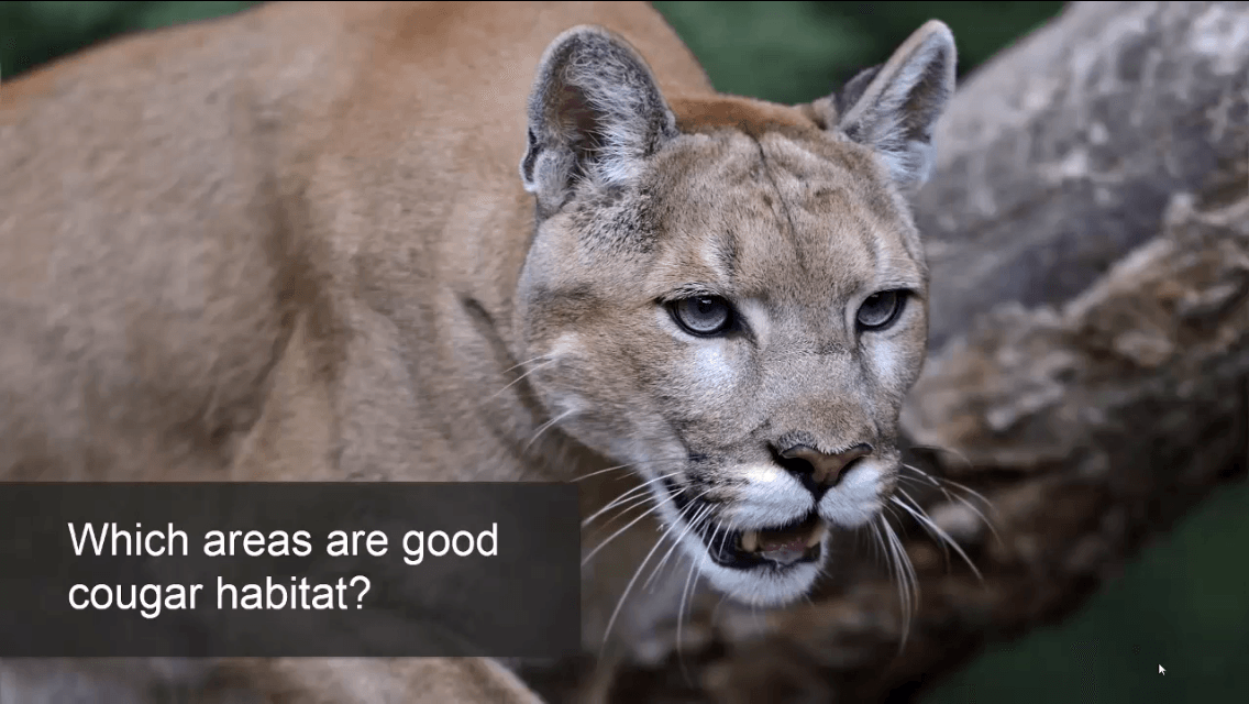 Cougar example by ESRI