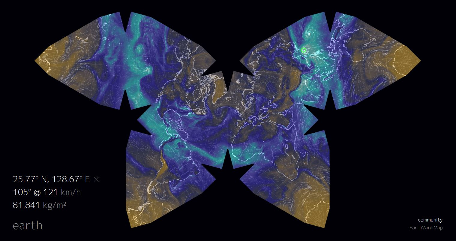 Butterfly Projection